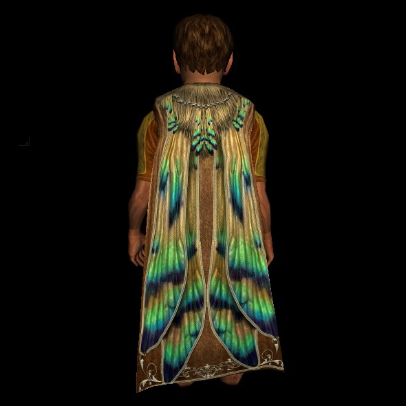 Cloak of the Dragonfly hobbit