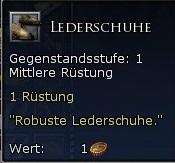 Lederschuhe