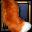 Very Shaggy Aurochs Tail-icon