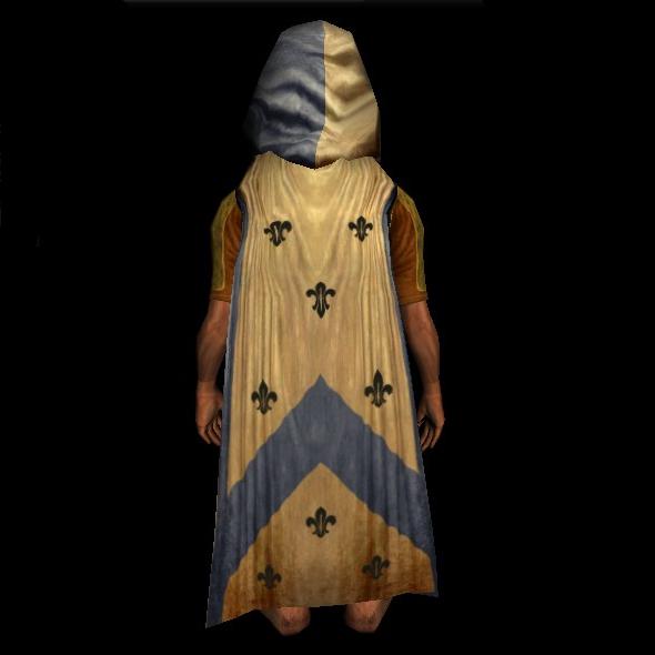 Magnificent Master's Hooded Cloak hobbit