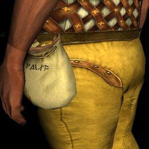 Treasure Hunter's Satchel2