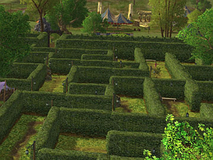 The Hedge Maze