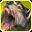 Snap-icon