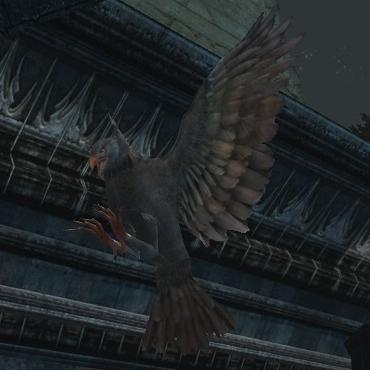 Improved Eagle-friend (Ashen-eagle)