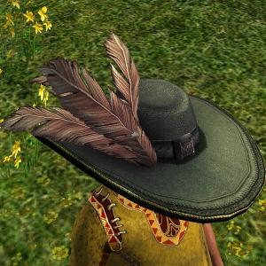 Fancy Plumed Hat hobbit sample2
