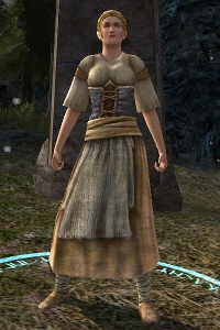 Festival Announcer (Tresure Hunter)