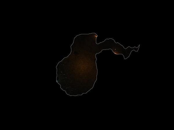 Chamber of Dancing Shadows MAP