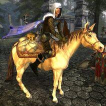 Treasure Laden Horse