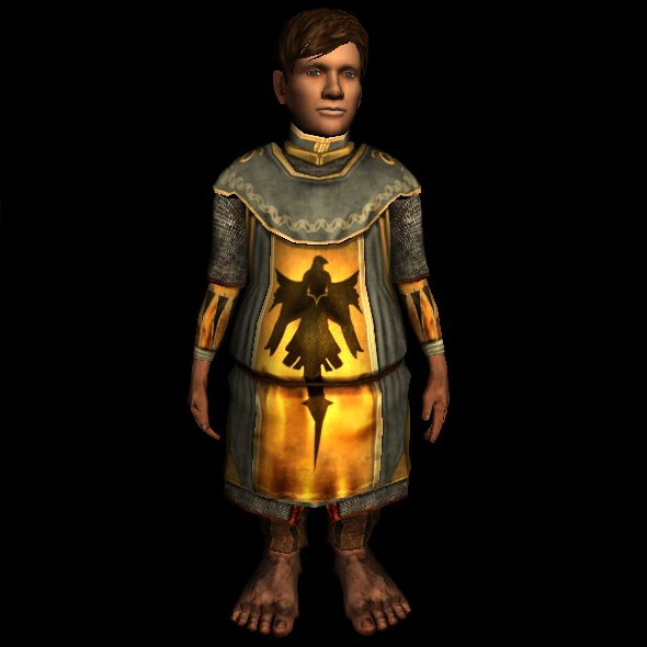 Lancer's Hauberk hobbit new