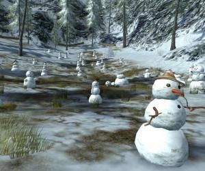 The Snowball Field