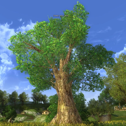 Shire Oak Tree