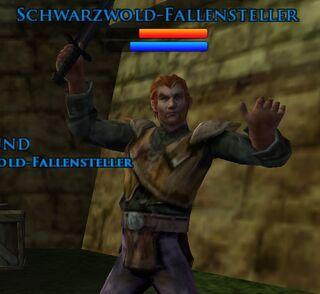 Schwarzwold-Fallensteller
