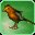 Bird-speech-icon