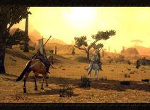Lone lands