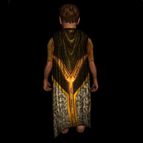 Fine Traveller's Cloak hobbit