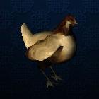 Chicken PIC