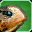 Turtle-speech icon