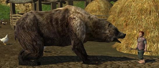Wildpaw bear