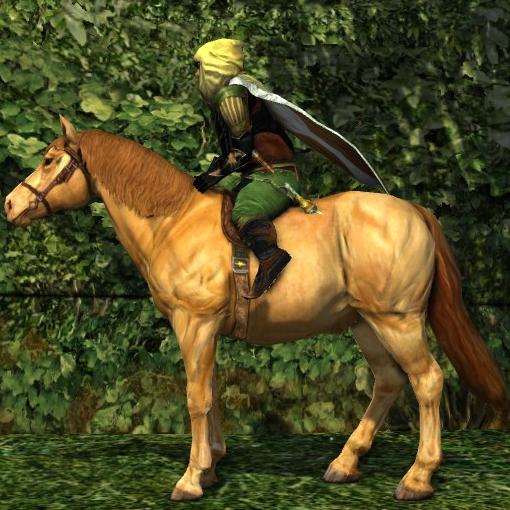 Blonde Sorrel Pony000
