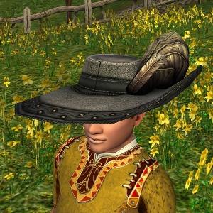 Elegant Plumed Hat hobbit sample