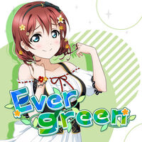 Evergreen (Cover)