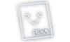 Rina Signature