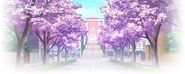 Otonokizaka High School 3