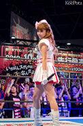 TokyoGameShow2012 Pile2