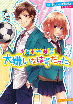 Daikirai Novel