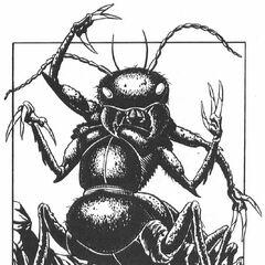 Killer Beetle