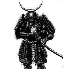 Aku-Shin Kage (Secrets of Japan)