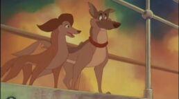 Charlie & Sasha (6)