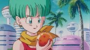 DragonballZ-Movie12 675