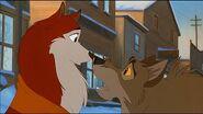 Balto & Jenna (2)
