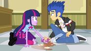 Twilight Sparkle & Flash Sentry (1)