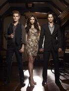 Elena, Damon & Stefan Love Triangle (7)