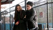 Elena & Damon Promotional Pic (22)