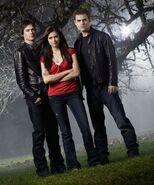 Elena, Damon & Stefan Love Triangle (2)