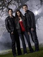 Elena, Damon & Stefan Love Triangle (1)