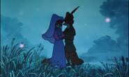 Robin Hood & Maid Marian (29)