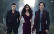 Elena, Damon & Stefan Love Triangle (5)