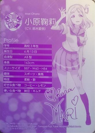 Profile mari