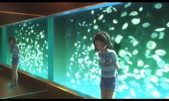 Aquarium-06