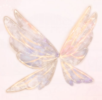 Transparent Wings