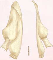 Warm Robe