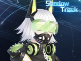 Shadow Track