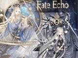 Fate Echo