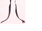 Golden Leaf Ribbon