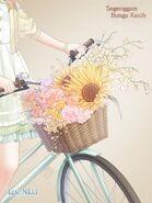Bouquet Bike close up 2