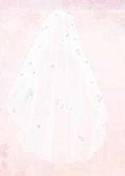 Dream Veil